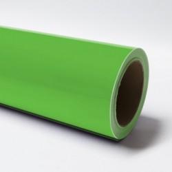 Vert Grenouille Brillant 062
