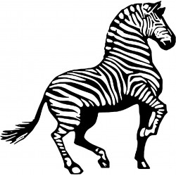 Stickers Cheval 10