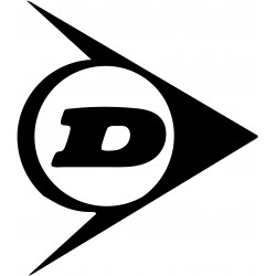 Stickers Décoauto 37